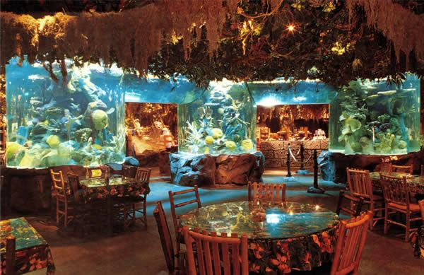 Rainforest Cafe - Constructed by Retail Construction Services, Inc. - Food and Beverage Contractor
